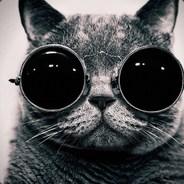 Jazz Cat - freedomroleplay.com